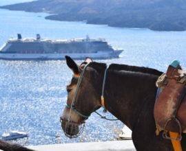 GoForCruise-Europa-MiddellandseZee-Griekenland-Santorini2