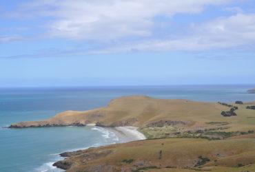 Go For Cruise Nieuw Zeeland Dunedin Celebrity Solstice
