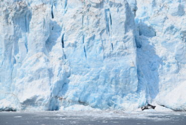 GoForCruise-USA-Alaska-HubbardGlacier