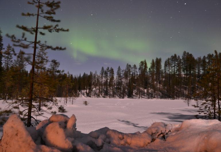 Go For Cruise Go For Lapland Noorderlicht Zweeds Lapland