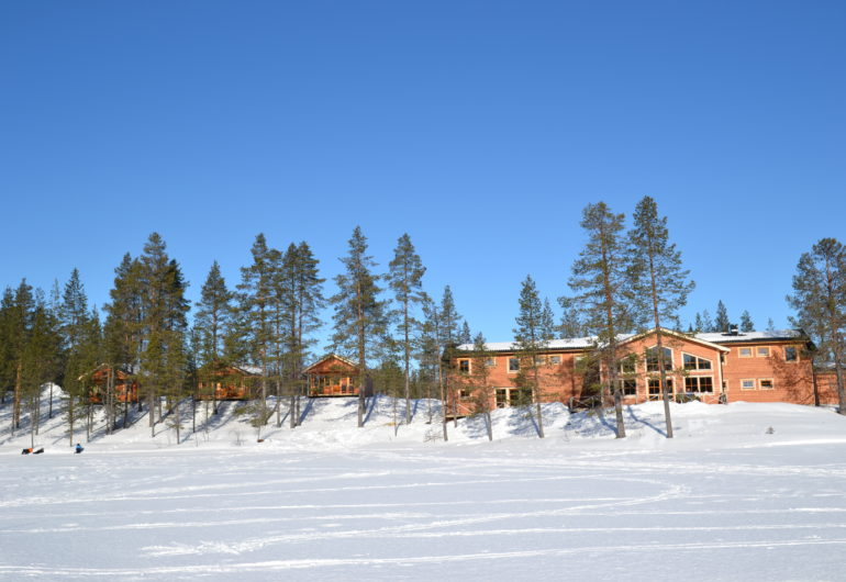 Go For Cruise Go For Lapland Pinetree Lodge
