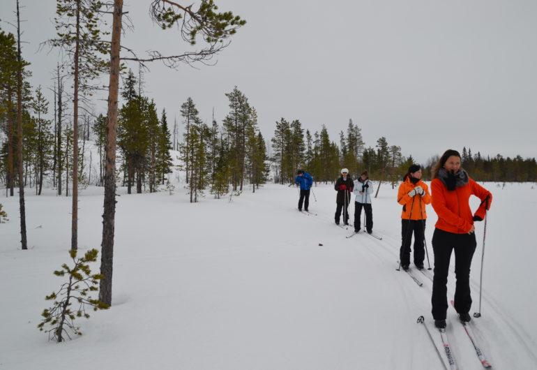 Go For Cruise Go For Lapland langlaufen