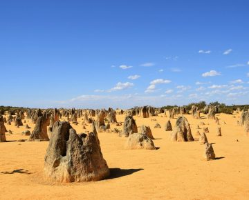 Bali Australië Cruise 2021 - Perth - Pinnacles Desert 2